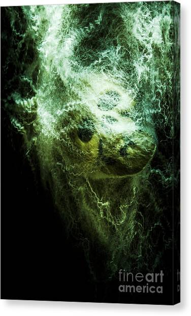 Spiders Canvas Print - Victim Of Prey by Jorgo Photography - Wall Art Gallery