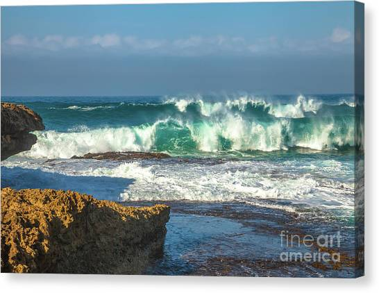 Great Otway National Park Canvas Print - Victoria Waves by Benny Marty