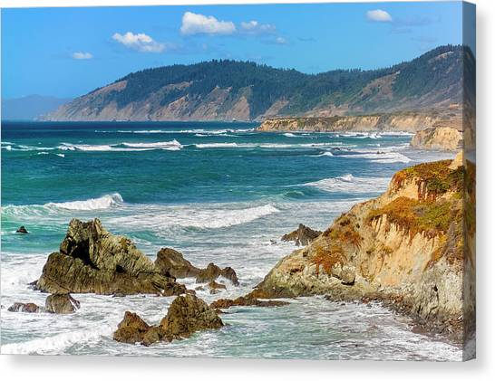 View From Abalone Point Canvas Print
