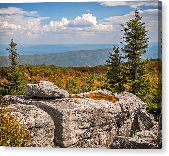 View From Bear Rocks 4173c Canvas Print