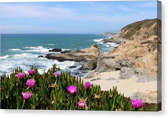 View From Bodega Head In Bodega Bay Ca - 3 Canvas Print