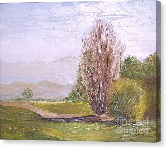 View From Casa Galleria Canvas Print