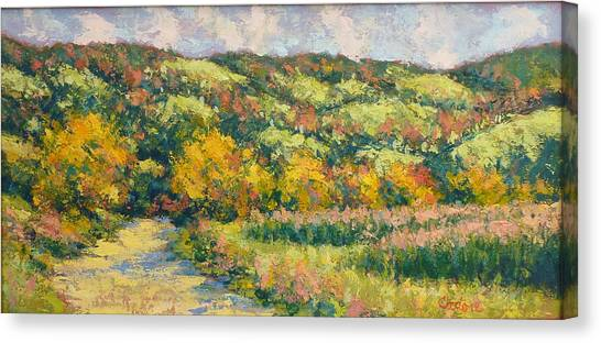 View From Pine Plains Canvas Print by Gene Cadore