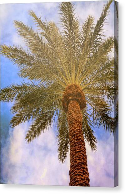 View From The Pool Canvas Print by JAMART Photography