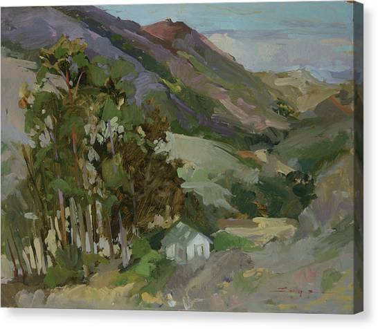 View From The Reservoir - Catalina Island Canvas Print