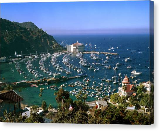 View Of Avalon Harbor Canvas Print