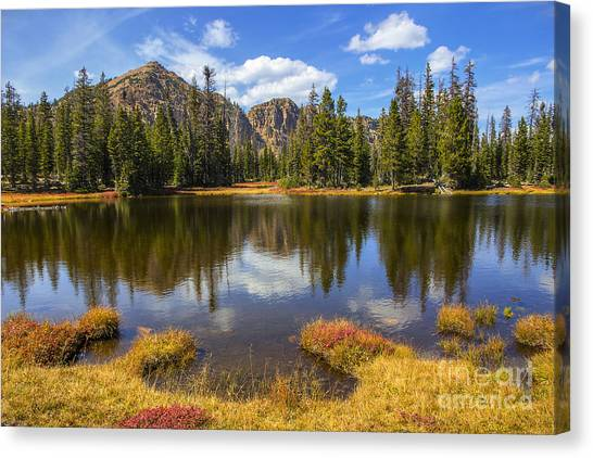View Towards Notch Mountain Canvas Print