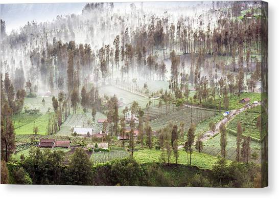 Canvas Print featuring the photograph Village Covered With Mist by Pradeep Raja Prints