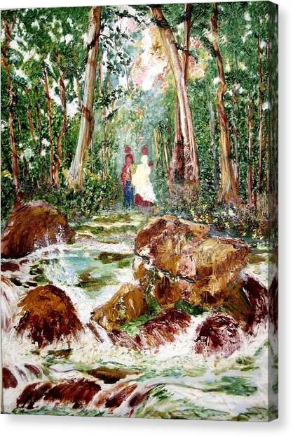 Village Stream Canvas Print by Narayan Iyer