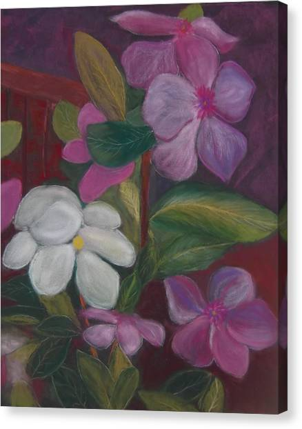 Vinca Major Canvas Print