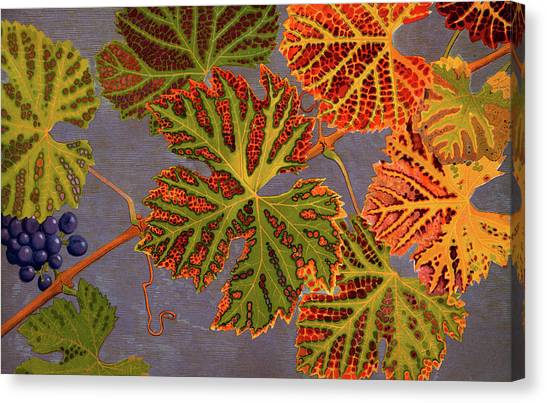 Vine Grapes Canvas Print - Vine Leaves And Ripened Grapes by Philippe Robert