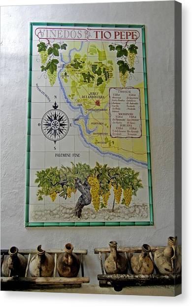 Vinedos Tio Pepe - Jerez De La Frontera Canvas Print
