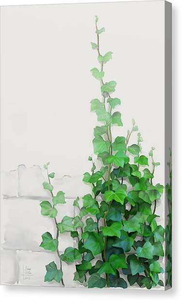Canvas Print featuring the painting Vines By The Wall by Ivana