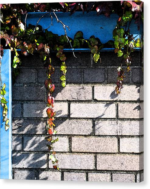 Vines On Blue Canvas Print by Gary Everson
