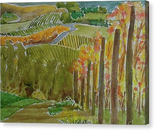 Vineyard And Cultivated Fields Canvas Print by Janet Butler