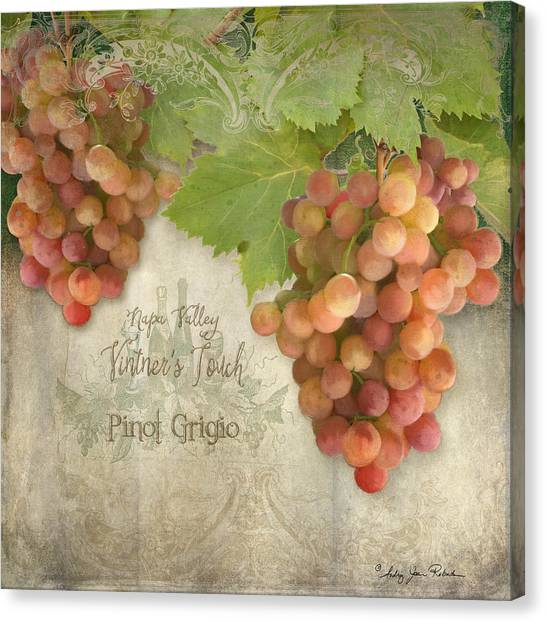 Sonoma Valley Canvas Print - Vineyard - Napa Valley Vintner's Touch Pinot Grigio Grapes  by Audrey Jeanne Roberts