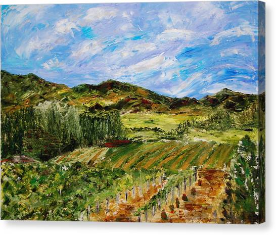 Vineyard Solitude Canvas Print by Deborah Gall