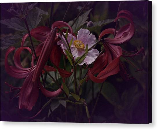 Vintage Asiatic Lilies  Canvas Print