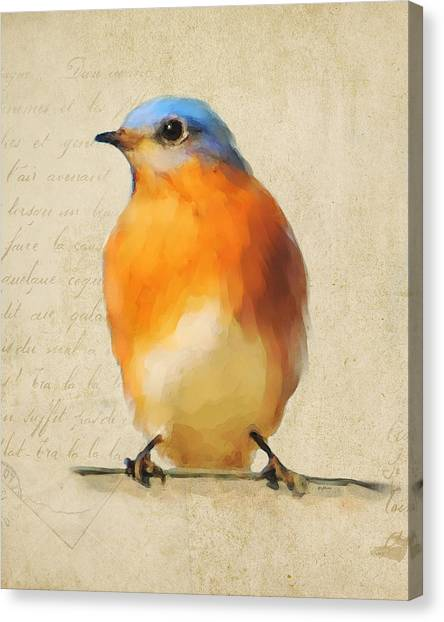 Vintage Bluebird Canvas Print