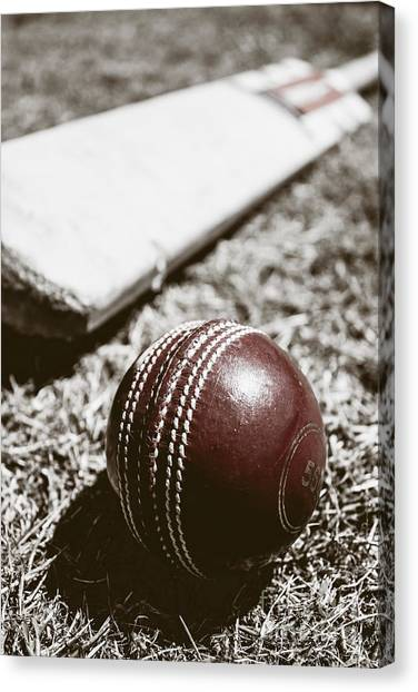 Crickets Canvas Print - Vintage Cricket by Jorgo Photography - Wall Art Gallery