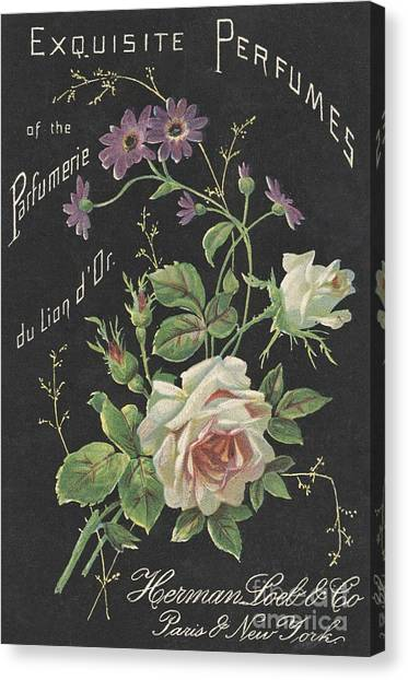 Vintage French Perfume  Canvas Print