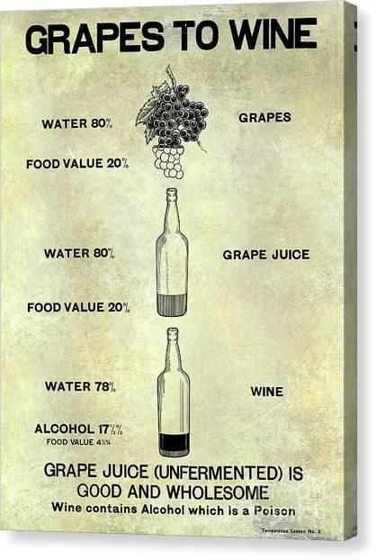 Cellar Canvas Print - Vintage Grape To Wine Chart by Jon Neidert