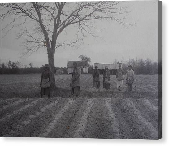 Vintage Photograph 1902 New Bern North Carolina Sharecroppers Canvas Print