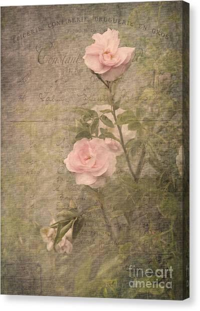 Vintage Rose Poster Canvas Print