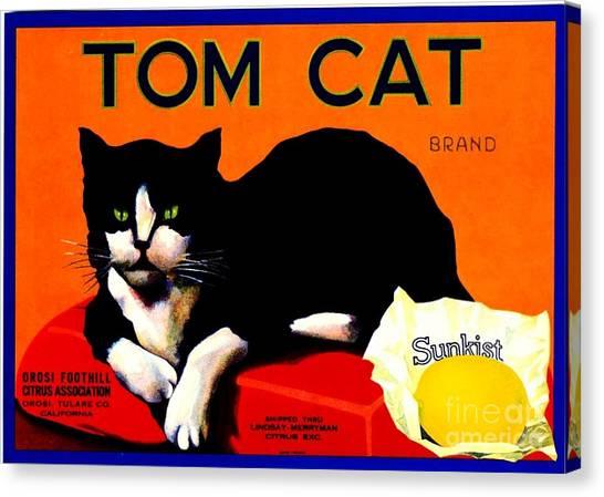 Vintage Sunkist Tom Cat Canvas Print