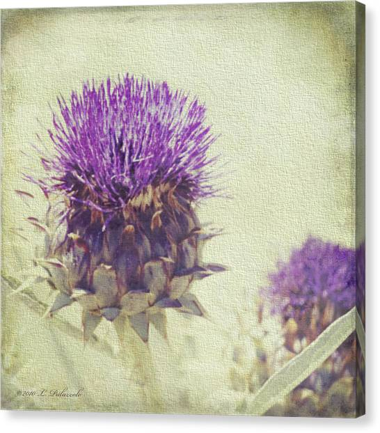 Vintage Thistle Canvas Print by Laura Palazzolo