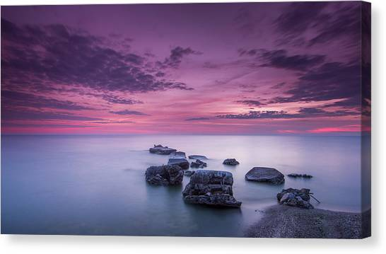 Violet Skies Canvas Print