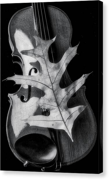 Stringed Instruments Canvas Print - Violin And Autumn Leaf In Black And White by Garry Gay