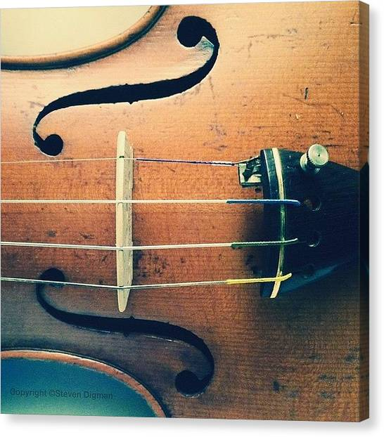 Violins Canvas Print - The Violin by Steven Digman