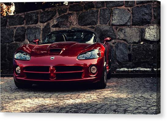 Vipers Canvas Print - Viper by Jackie Russo