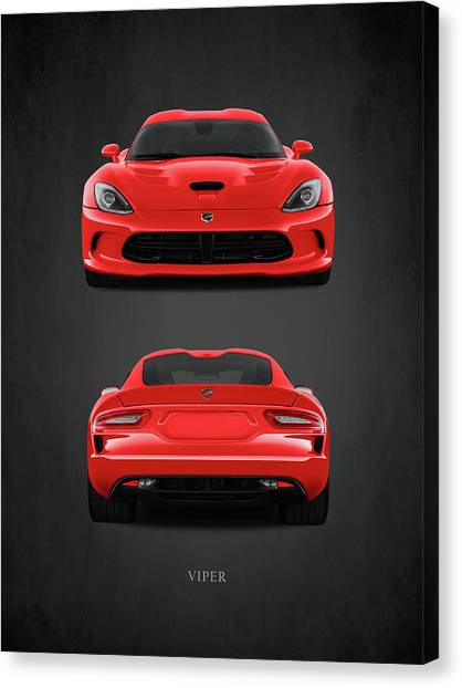 Viper Canvas Print - Viper by Mark Rogan