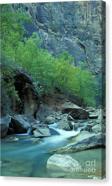Virgin River In Zion 2 Canvas Print by Stan and Anne Foster
