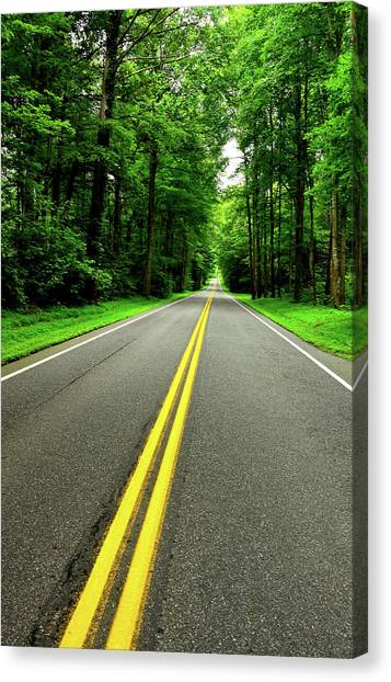 Virginia Road Canvas Print