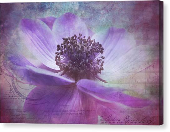 Vision De Violette Canvas Print