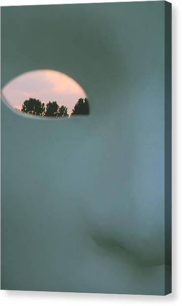 Visions At Sunset Canvas Print