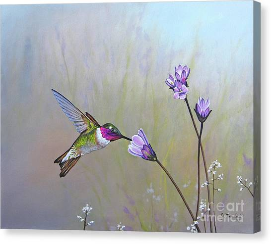 Visiting The Purple Garden Canvas Print