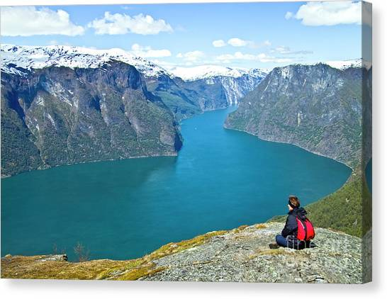 Visitor At Aurlandsfjord Canvas Print