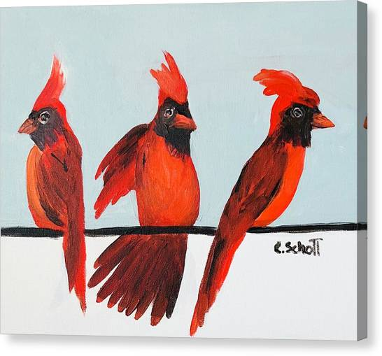 Visits From A Dancing Cardinal Canvas Print