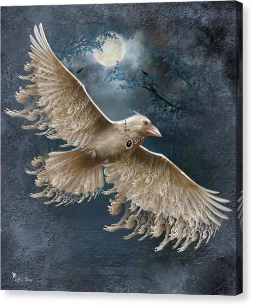Viva The White Raven  Canvas Print