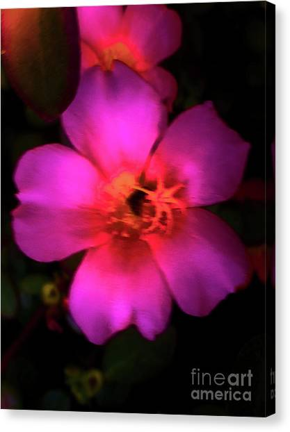 Vivid Rich Pink Flower Canvas Print