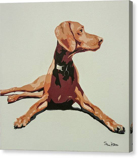 Puppies Canvas Print - Vizsla 3 by Slade Roberts