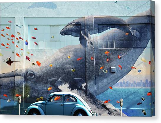 Volkswagen Beetle And Humpback Whale Canvas Print by Larry Butterworth