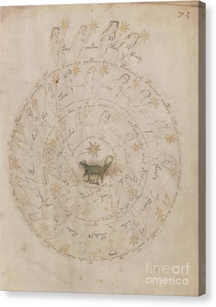 Voynich Manuscript Astro Scorpio Canvas Print