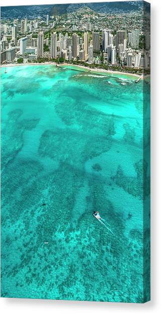 Catamarans Canvas Print - Waikiki Catamaran by Sean Davey