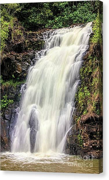 Waimea Falls Canvas Print