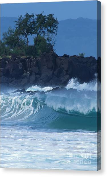 Waimea Shorebreak Canvas Print by Stan and Anne Foster